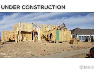 Single Family Home For Sale: 3981 Roper Trl