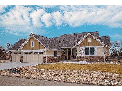 Niwot Single Family Home For Sale: 7482 Citation Ln