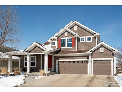 Weld County Single Family Home For Sale: 197 Nelson St