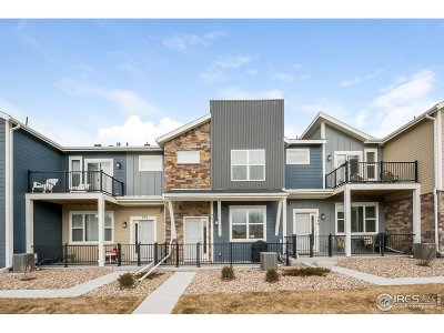 Longmont Condo/Townhouse For Sale: 731 Grandview Meadows Dr