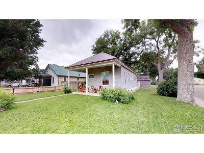 Brush Single Family Home For Sale: 520 Custer St