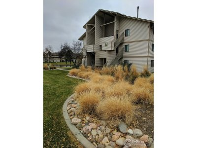 Fort Collins Condo/Townhouse For Sale: 1705 Heatheridge Rd #M202
