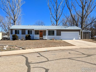 Greeley Single Family Home Active-Backup: 1736 29th Ave Pl