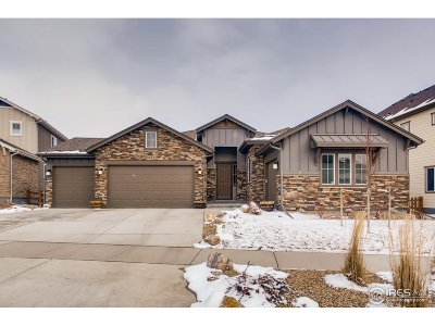 Arvada Single Family Home For Sale: 9452 Gore Loop