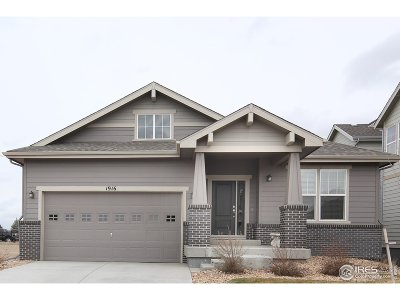 Weld County Single Family Home For Sale: 1916 Los Cabos Dr