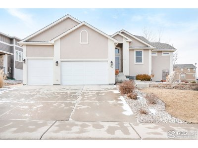 Greeley Single Family Home For Sale: 501 56th Ave
