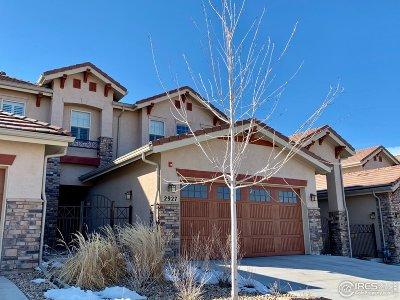 Superior Condo/Townhouse For Sale: 2927 Tierra Ridge Ct