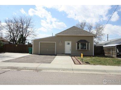 Hudson Single Family Home Active-Backup: 253 Birch St