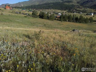 Drake Residential Lots & Land For Sale: 1730 Palisade Mountain Dr