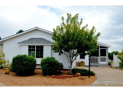 Single Family Home For Sale: 810 Sunchase Dr