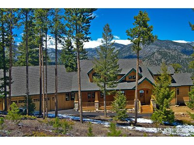 Estes Park Single Family Home For Sale: 2511 Cirrus Ln