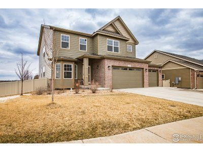 Greeley Single Family Home Active-Backup: 2202 Talon Pkwy