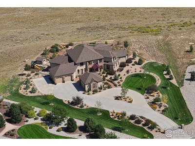 Weld County Single Family Home For Sale: 1076 Osprey Ct