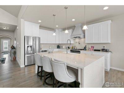 Hudson Single Family Home For Sale: 31381 E 161st Ct