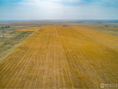 Nunn Farm & Ranch For Sale: County Road 37