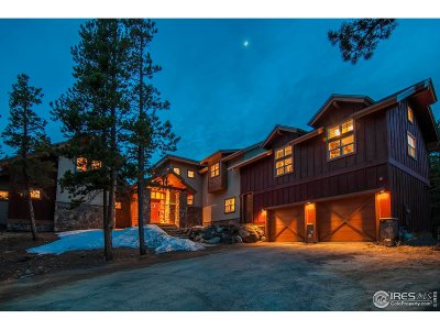 Nederland Single Family Home For Sale: 255 Indian Peaks Dr