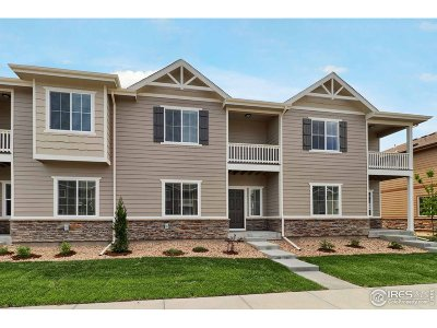 Longmont Condo/Townhouse For Sale: 1221 S Sherman St
