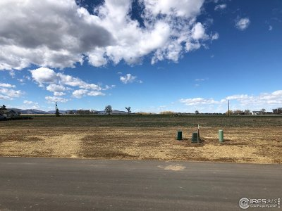 Berthoud Residential Lots & Land For Sale: 556 Talons Reach Run