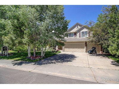Loveland Single Family Home For Sale: 231 Glacier View Pl