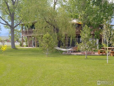 Loveland Single Family Home For Sale: 4616 Lonetree Dr