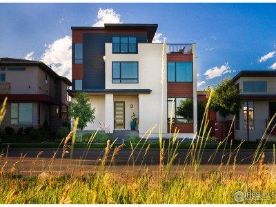 Longmont Single Family Home For Sale: 920 Plateau Rd