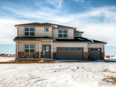 Longmont Single Family Home For Sale: 10491 Panorama Cir