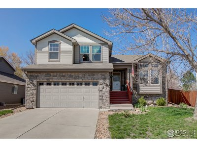 Loveland Single Family Home For Sale: 3155 Sally Ann Dr