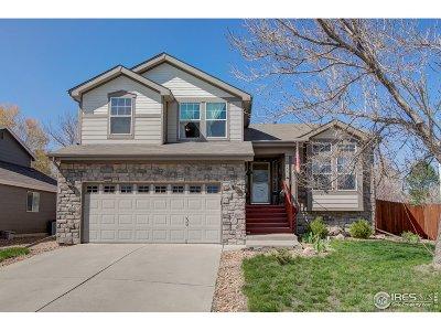 Loveland Single Family Home For Sale: 3155 Sally Ann Dr