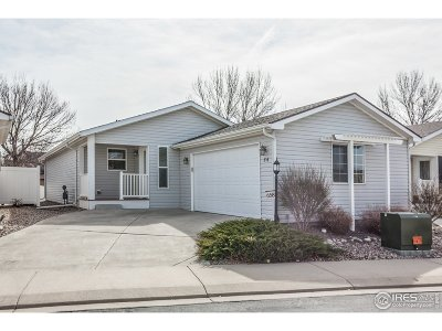Fort Collins Single Family Home For Sale: 658 Brandt Cir