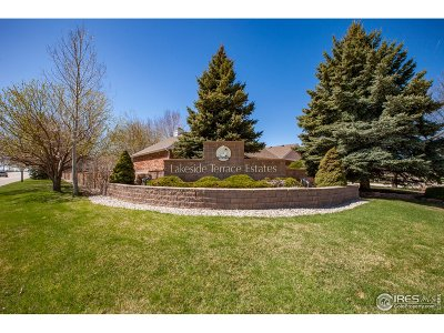 Loveland Single Family Home For Sale: 1441 Glenda Ct