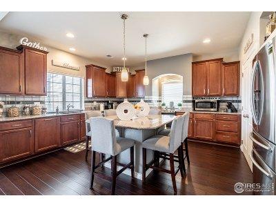 Denver Single Family Home For Sale: 19067 Randolph Pl