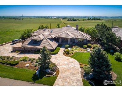 Niwot Single Family Home For Sale: 6466 Legend Ridge Trl
