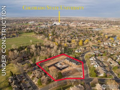 Fort Collins Condo/Townhouse For Sale: 910 Hill Pond Rd #17