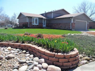 Longmont Single Family Home For Sale: 1250 Vail Ln