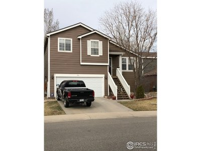 Loveland Single Family Home For Sale: 1816 Twin Lakes Cir
