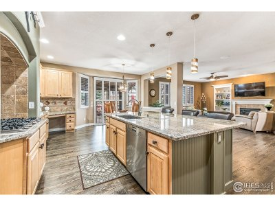 Broomfield Single Family Home For Sale: 14040 Westhampton Pt