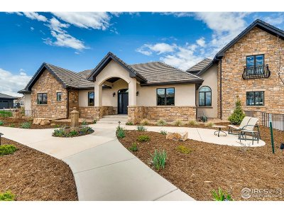 Longmont Single Family Home For Sale: 8357 Summerlin Dr