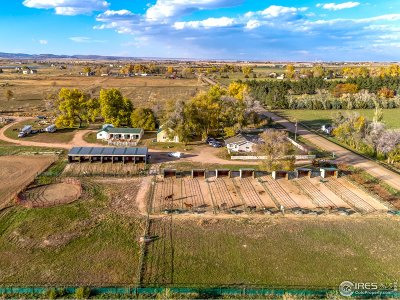 Fort Collins Farm & Ranch For Sale: 10257 N County Road 17