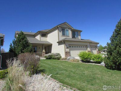 Fort Collins Single Family Home For Sale: 4133 Center Gate Ct
