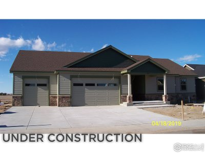Wiggins Single Family Home For Sale: 109 11th Ave