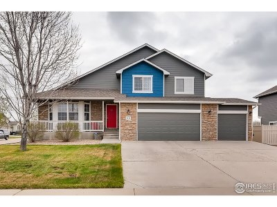 Firestone Single Family Home For Sale: 9944 Cascade St