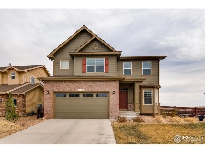 Windsor Single Family Home For Sale: 2137 Longfin Dr
