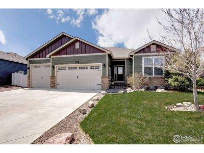 Windsor Single Family Home For Sale: 512 Dakota Ct