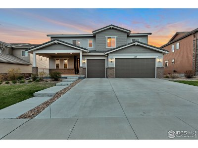 Broomfield Single Family Home For Sale: 15971 Lookout Pt