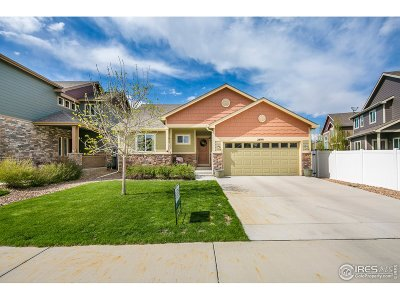 Loveland Single Family Home For Sale: 2899 Pictor St