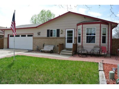 Berthoud Single Family Home For Sale: 107 Keep Cir