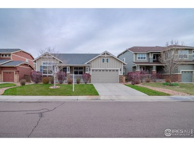 Thornton Single Family Home For Sale: 14082 Detroit Dr