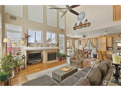 Thornton Single Family Home For Sale: 13245 Krameria St