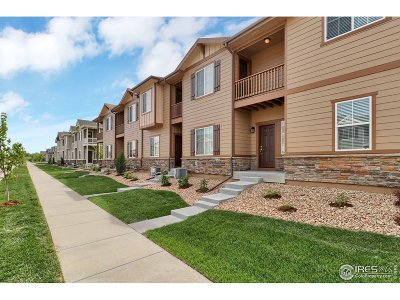 Longmont Condo/Townhouse For Sale: 1225 S Sherman St