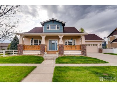 Berthoud Single Family Home For Sale: 913 Wilshire Dr